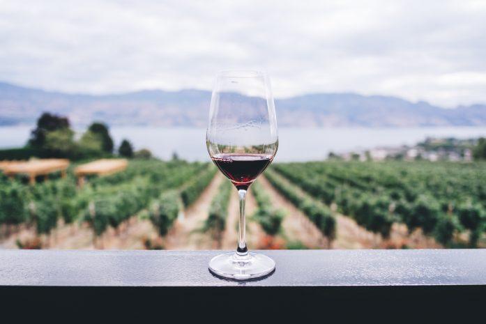 Trasportare vini - La specialità di Smyb